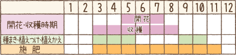 栽培カレンダー