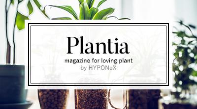 植物とあなたをつなぐPlantia