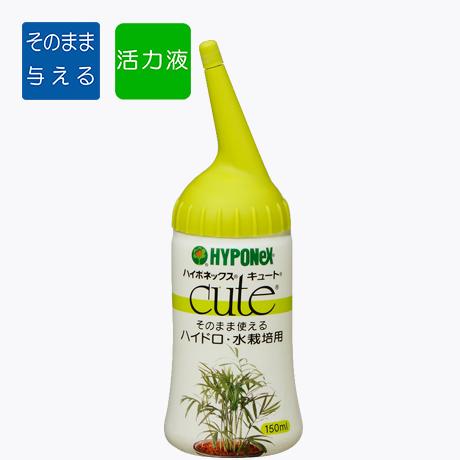 キュート ハイドロ・水栽培用