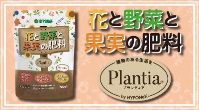 Plantia 花と野菜と果実の肥料