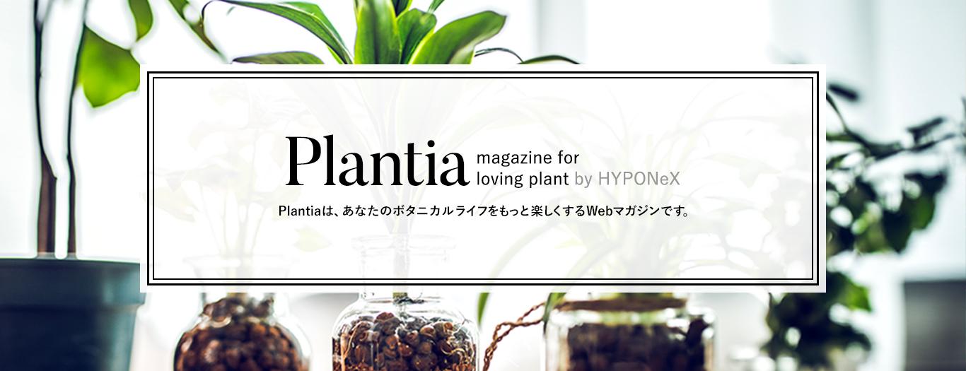 ウェブマガジン Plantia