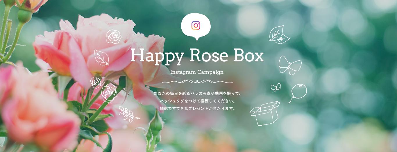 Happy Rose Box インスタグラムプレゼントキャンペーン