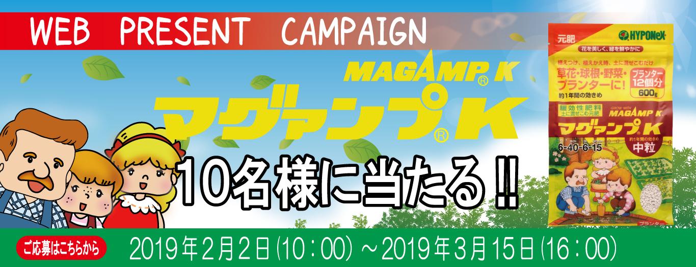 WEBプレゼントキャンペーン「マグァンプ」