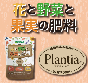 Plantia