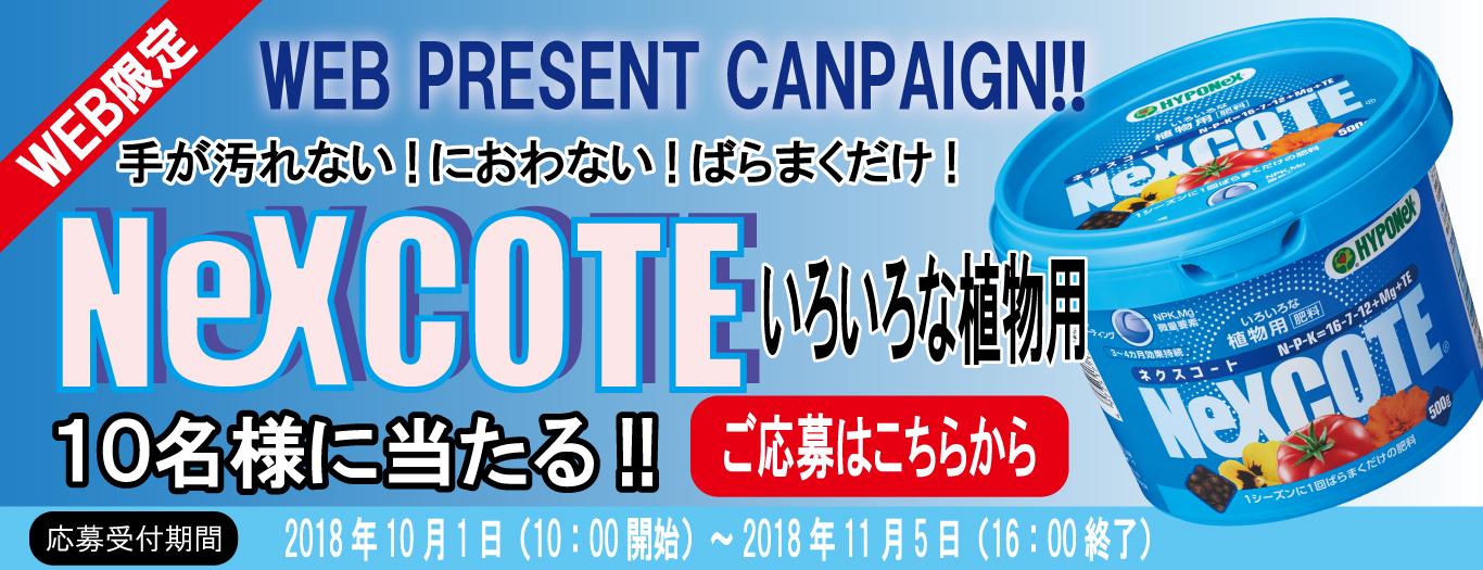 NexCOTE Webプレゼントキャンペーン