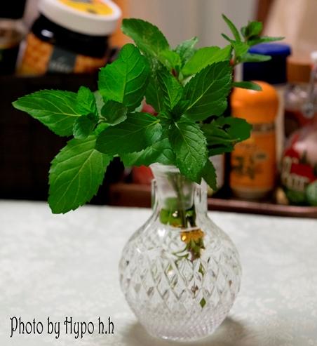 花瓶ミント