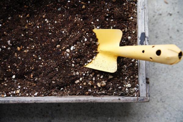 性 と 肥料 は 緩 効