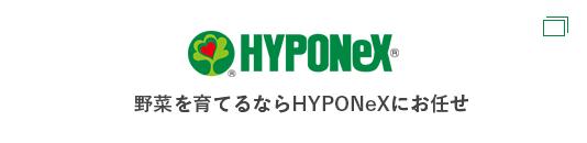 野菜を育てるならHYPONeXにお任せ HYPONeXサイトへ