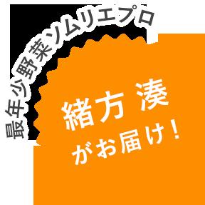 最年少野菜ソムリエプロ 緒方湊がお届け!