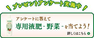 ボタン:プレゼントアンケート実施中!アンケートに答えて専用液肥-野菜-を当てよう!詳しくはこちら